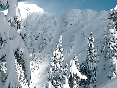 Vancouver-Island-Backcountry-Skiing-Mount-Cain-West-Bowl