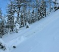 Backcountry observations + avalanche report