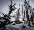 Ashely Barker wins the 2015 Arcteryx Deep Winter Photo Challenge