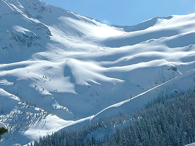 Howson Range Smithers Polemic Pass-Backcountry-Skiing