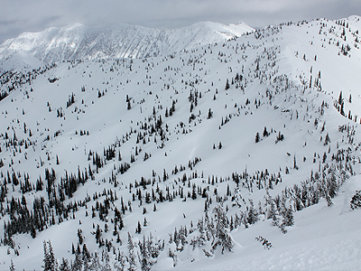 Kootenay-Pass-Backcountry-Skiing