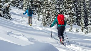 Beginner's Guide to Backcountry Ski and Snowboard Touring - Part One