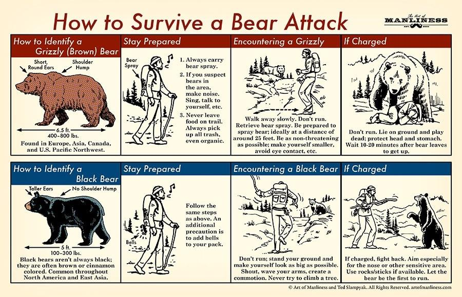 How to use bear spray